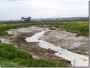 River Darent 2