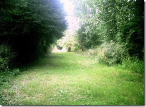 Roman Road near Beneden