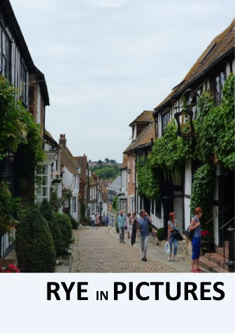 Rye Cover Mermaid Street v2
